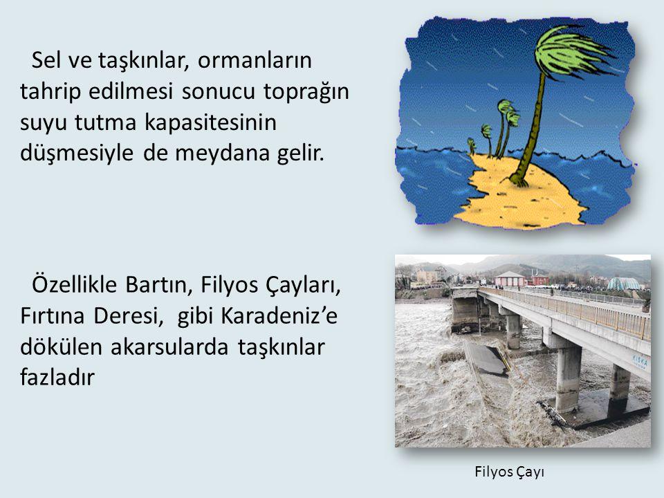 Sel ve taşkınlar, ormanların tahrip edilmesi sonucu toprağın suyu tutma kapasitesinin düşmesiyle de meydana gelir.