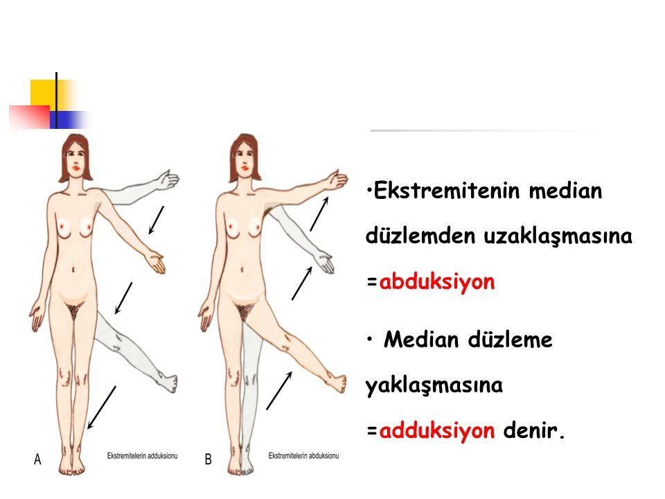 Ekstremitenin median düzlemden uzaklaşmasına =abduksiyon