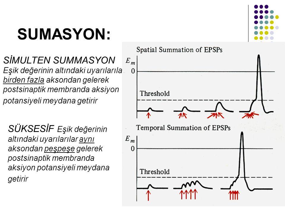 SUMASYON:
