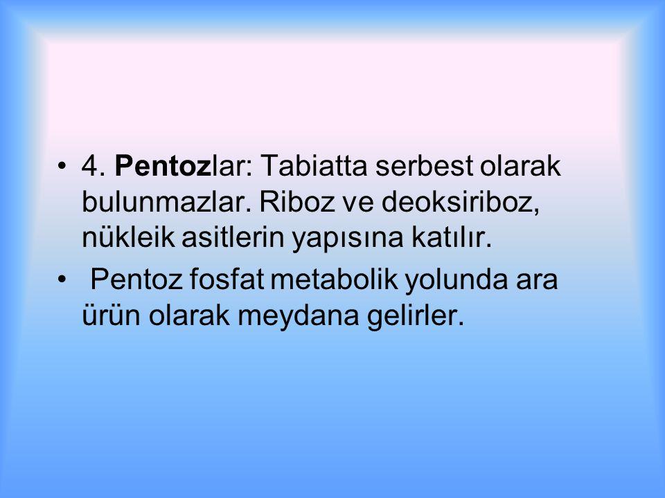 4. Pentozlar: Tabiatta serbest olarak bulunmazlar