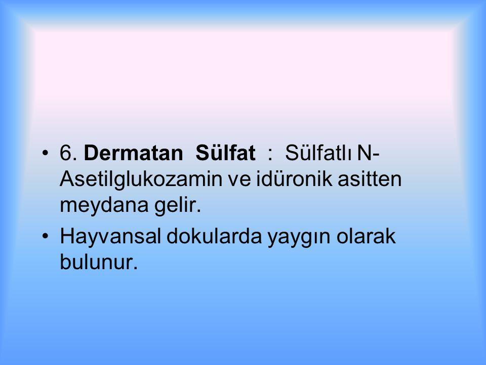 6. Dermatan Sülfat : Sülfatlı N-Asetilglukozamin ve idüronik asitten meydana gelir.