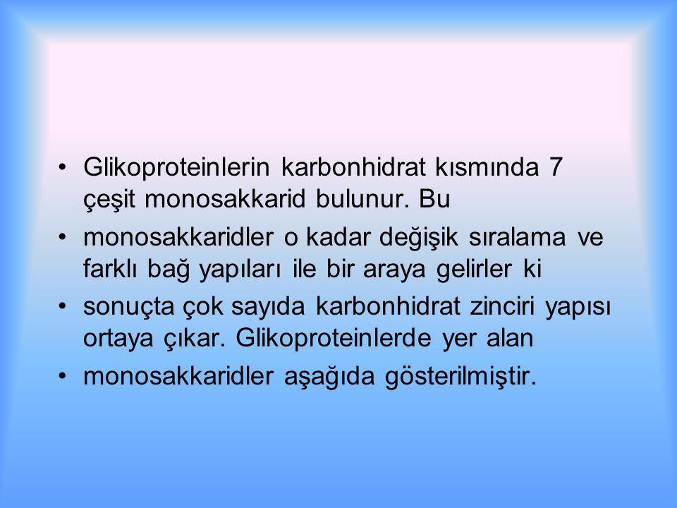 Glikoproteinlerin karbonhidrat kısmında 7 çeşit monosakkarid bulunur