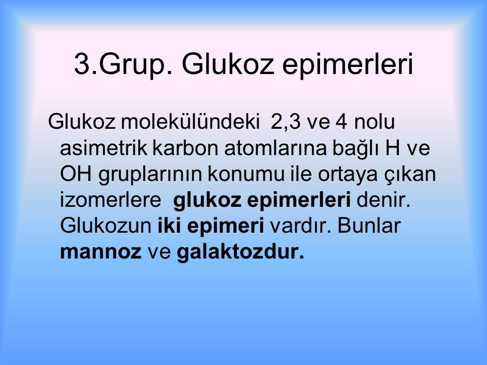 3.Grup. Glukoz epimerleri