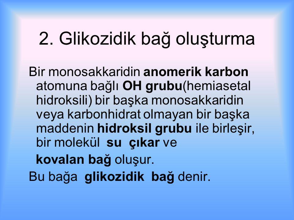 2. Glikozidik bağ oluşturma