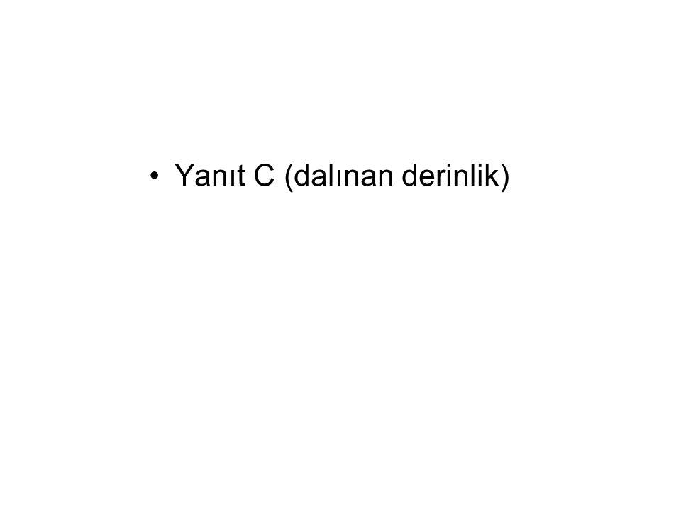 Yanıt C (dalınan derinlik)