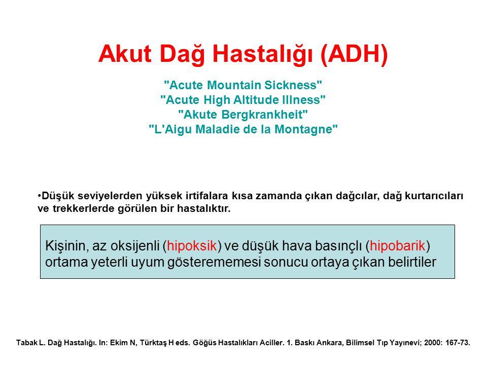 Akut Dağ Hastalığı (ADH)