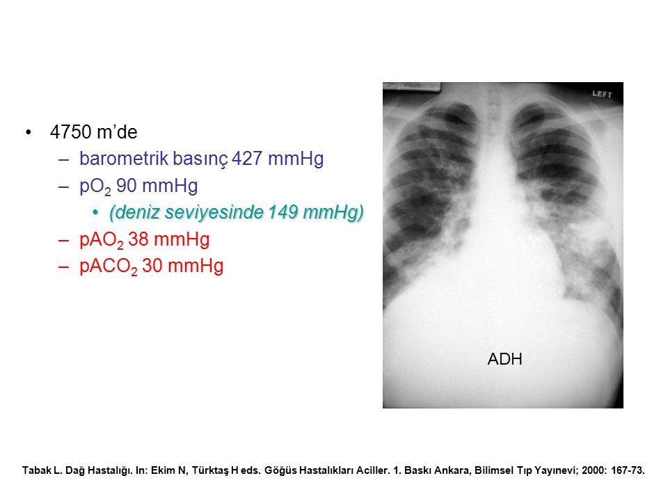 barometrik basınç 427 mmHg pO2 90 mmHg (deniz seviyesinde 149 mmHg)