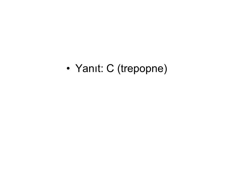 Yanıt: C (trepopne)
