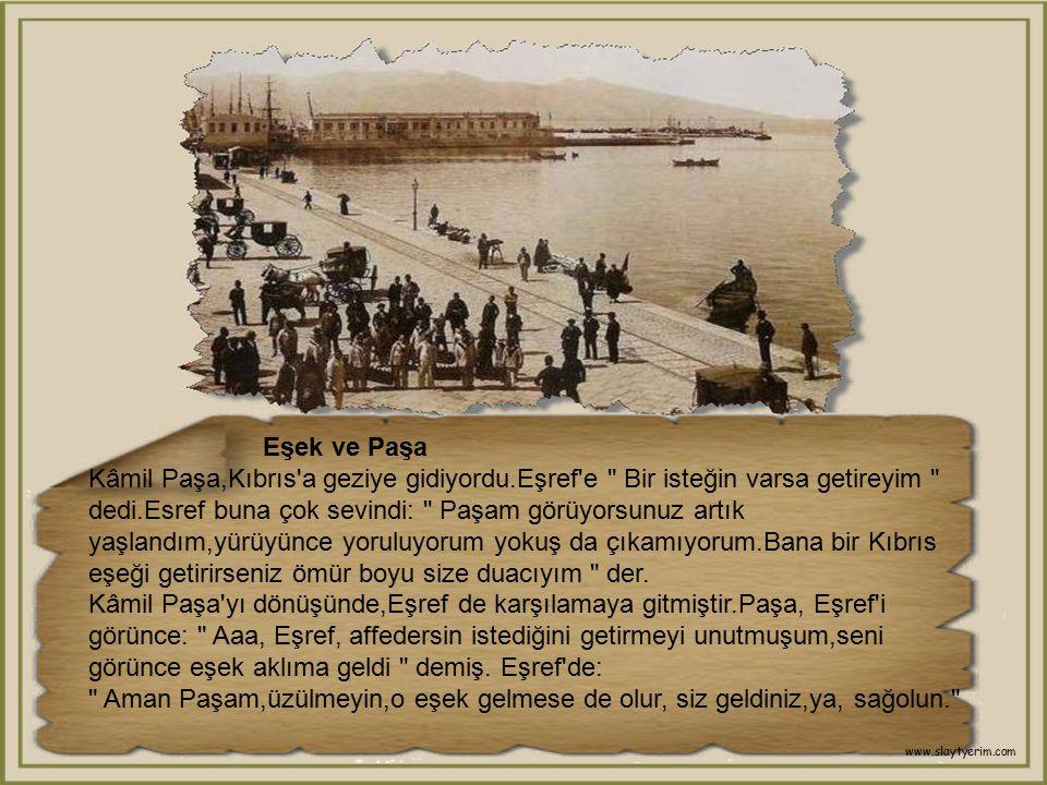 Eşek ve Paşa Kâmil Paşa,Kıbrıs a geziye gidiyordu