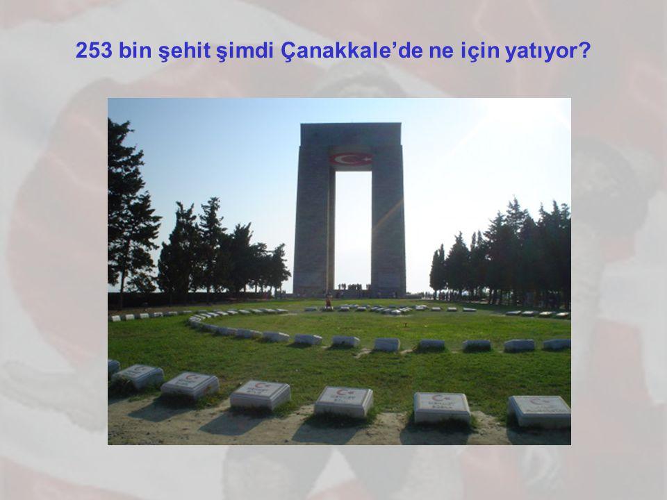 253 bin şehit şimdi Çanakkale'de ne için yatıyor