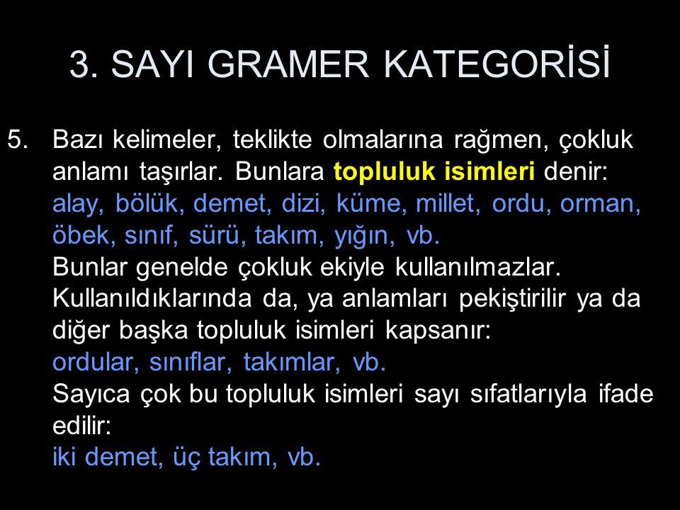 3. SAYI GRAMER KATEGORİSİ