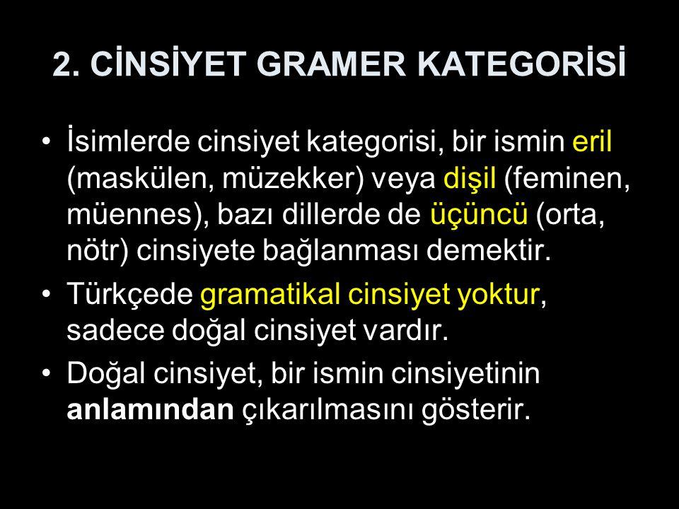 2. CİNSİYET GRAMER KATEGORİSİ