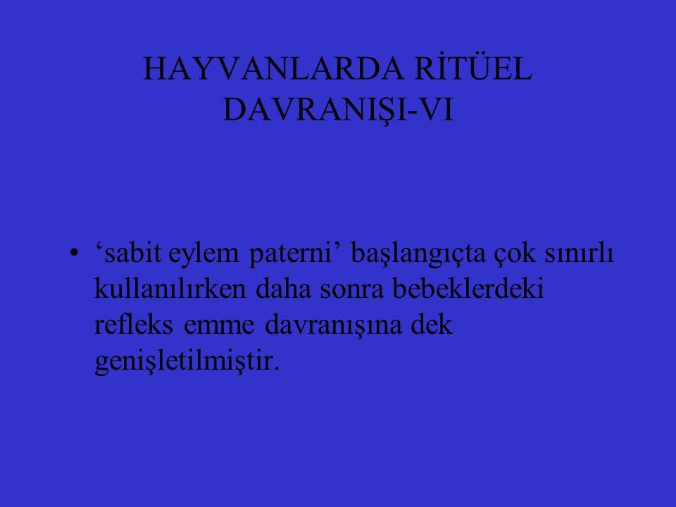 HAYVANLARDA RİTÜEL DAVRANIŞI-VI