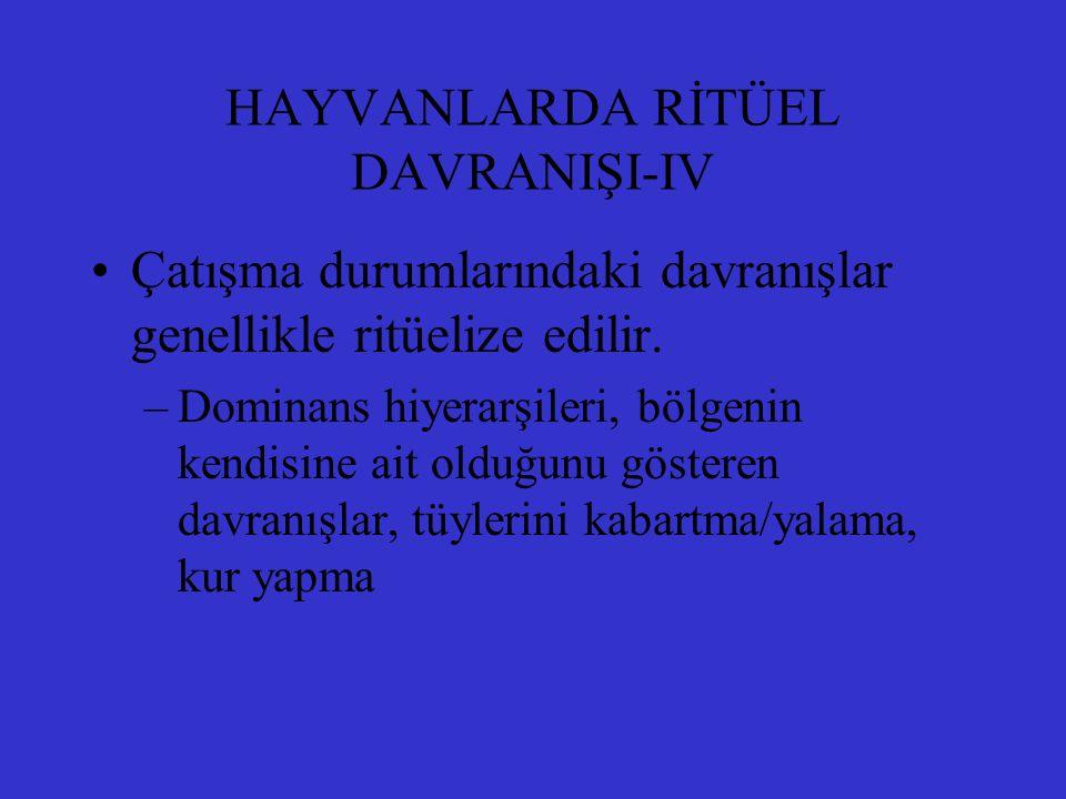 HAYVANLARDA RİTÜEL DAVRANIŞI-IV