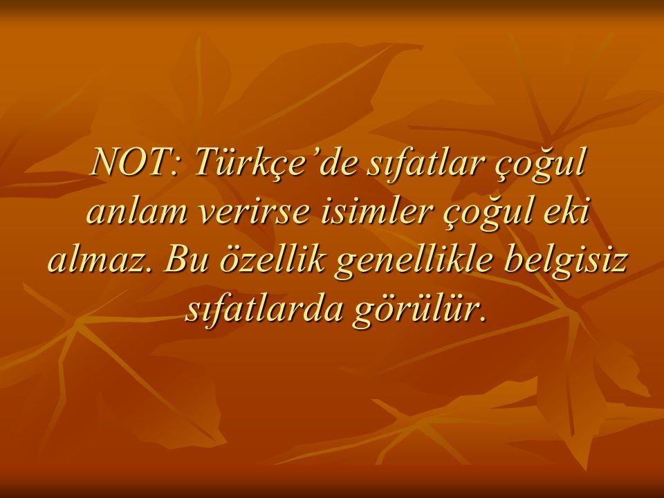 NOT: Türkçe'de sıfatlar çoğul anlam verirse isimler çoğul eki almaz