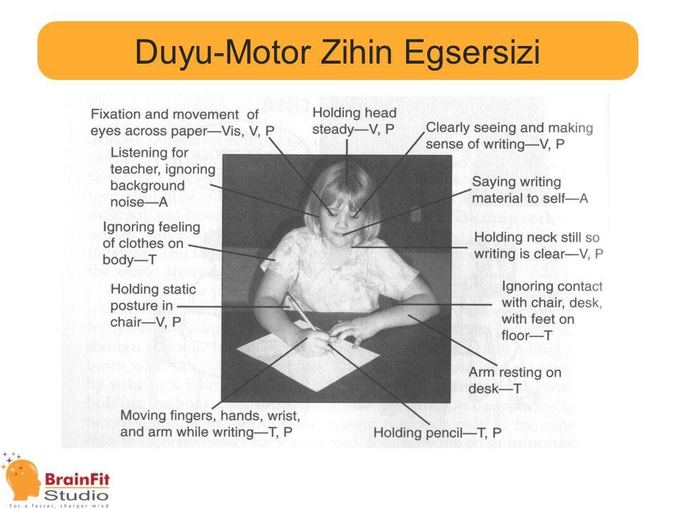 Duyu-Motor Zihin Egsersizi