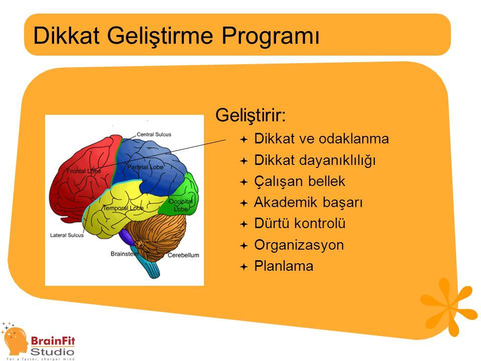 Dikkat Geliştirme Programı
