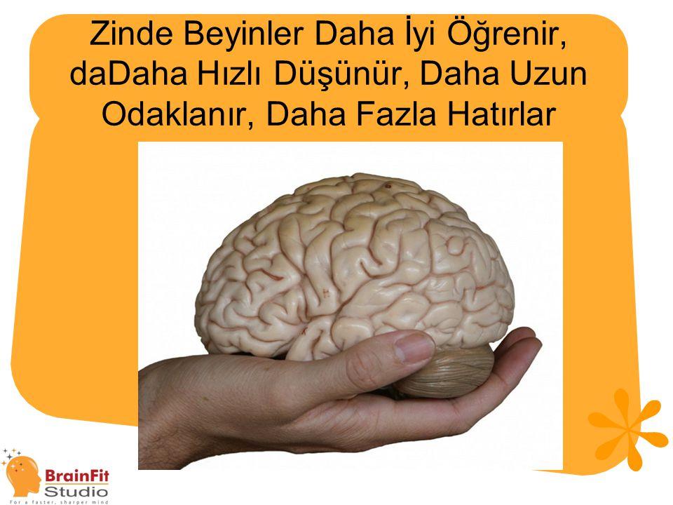 Zinde Beyinler Daha İyi Öğrenir, daDaha Hızlı Düşünür, Daha Uzun Odaklanır, Daha Fazla Hatırlar