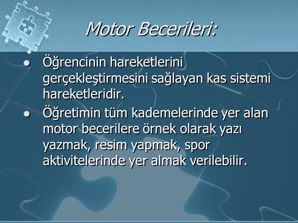 Motor Becerileri: Öğrencinin hareketlerini gerçekleştirmesini sağlayan kas sistemi hareketleridir.