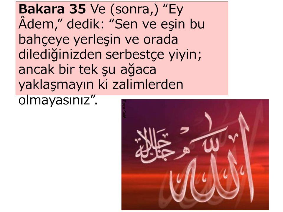 Bakara 35 Ve (sonra,) Ey Âdem, dedik: Sen ve eşin bu bahçeye yerleşin ve orada dilediğinizden serbestçe yiyin; ancak bir tek şu ağaca yaklaşmayın ki zalimlerden olmayasınız .