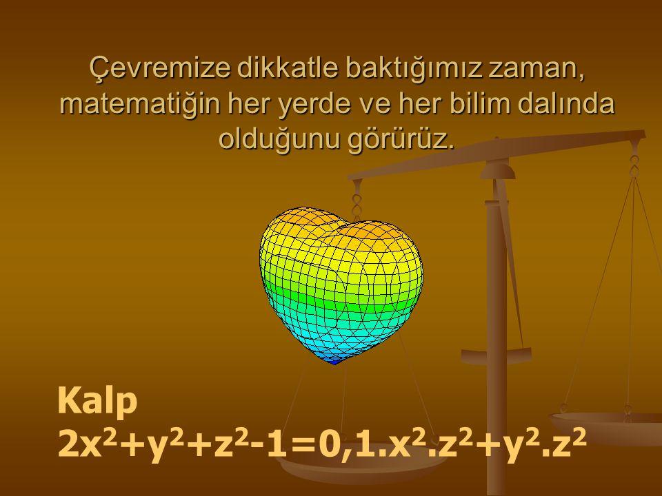 Çevremize dikkatle baktığımız zaman, matematiğin her yerde ve her bilim dalında olduğunu görürüz.