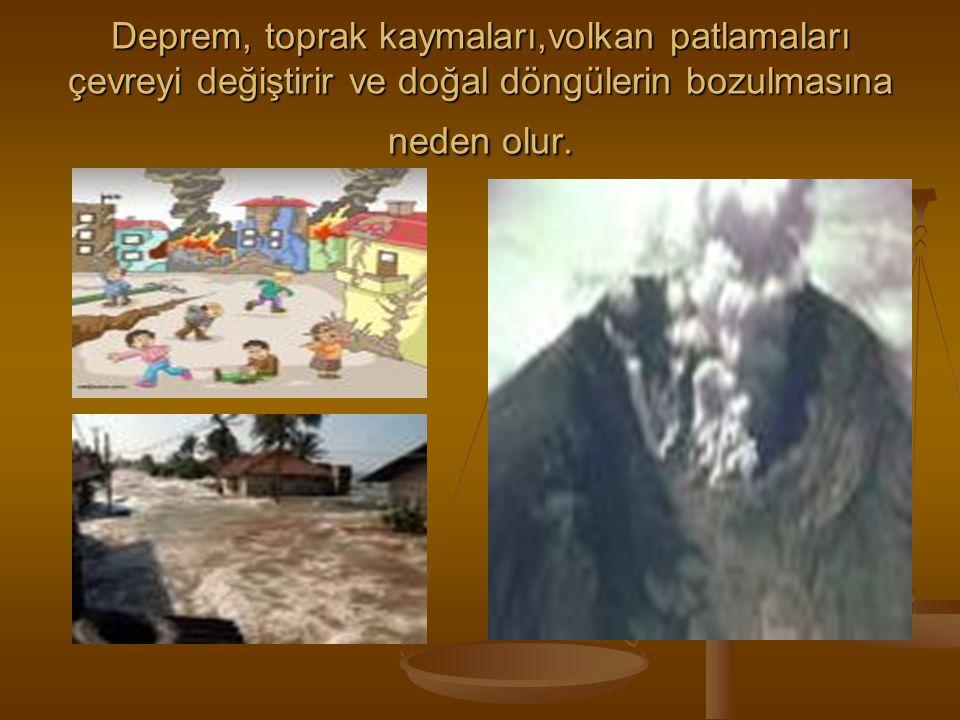 Deprem, toprak kaymaları,volkan patlamaları çevreyi değiştirir ve doğal döngülerin bozulmasına neden olur.