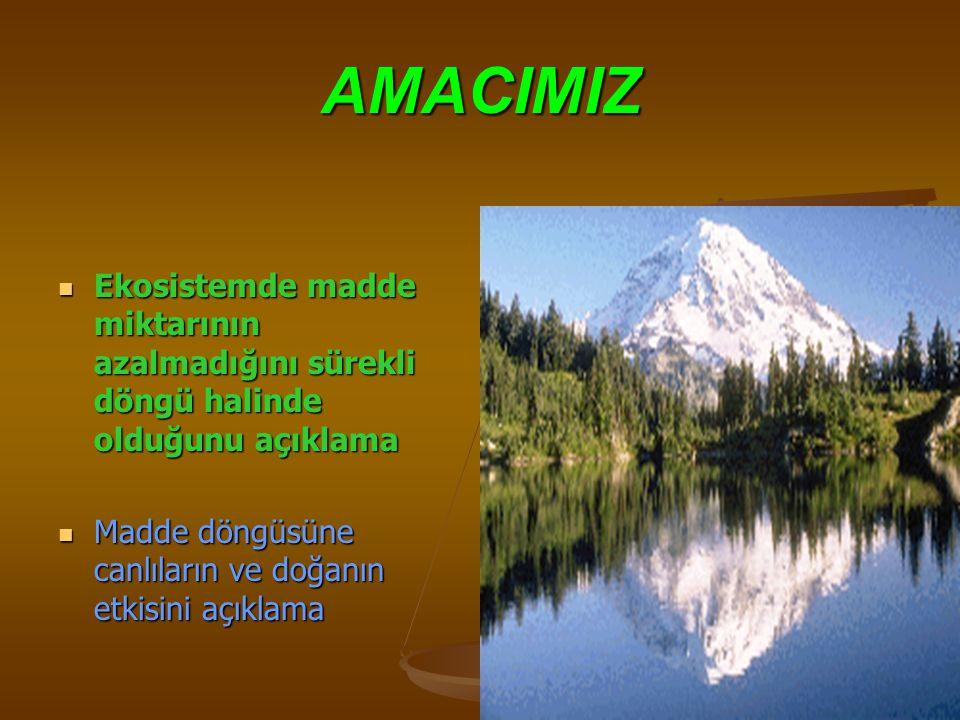 AMACIMIZ Ekosistemde madde miktarının azalmadığını sürekli döngü halinde olduğunu açıklama.
