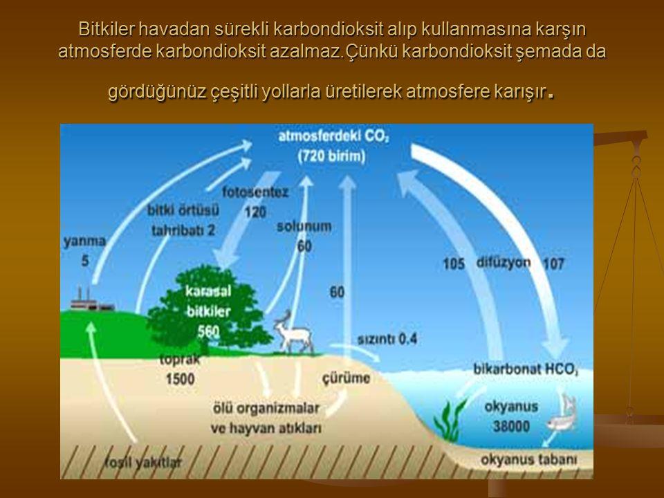 Bitkiler havadan sürekli karbondioksit alıp kullanmasına karşın atmosferde karbondioksit azalmaz.Çünkü karbondioksit şemada da gördüğünüz çeşitli yollarla üretilerek atmosfere karışır.