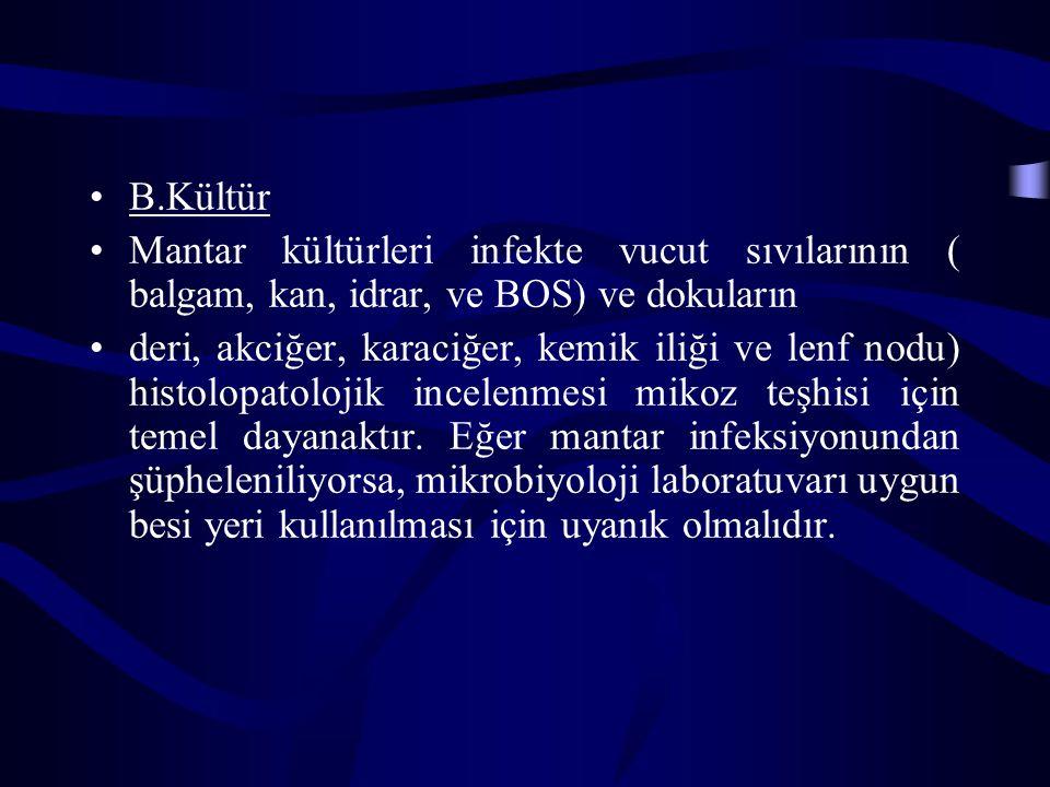 B.Kültür Mantar kültürleri infekte vucut sıvılarının ( balgam, kan, idrar, ve BOS) ve dokuların.