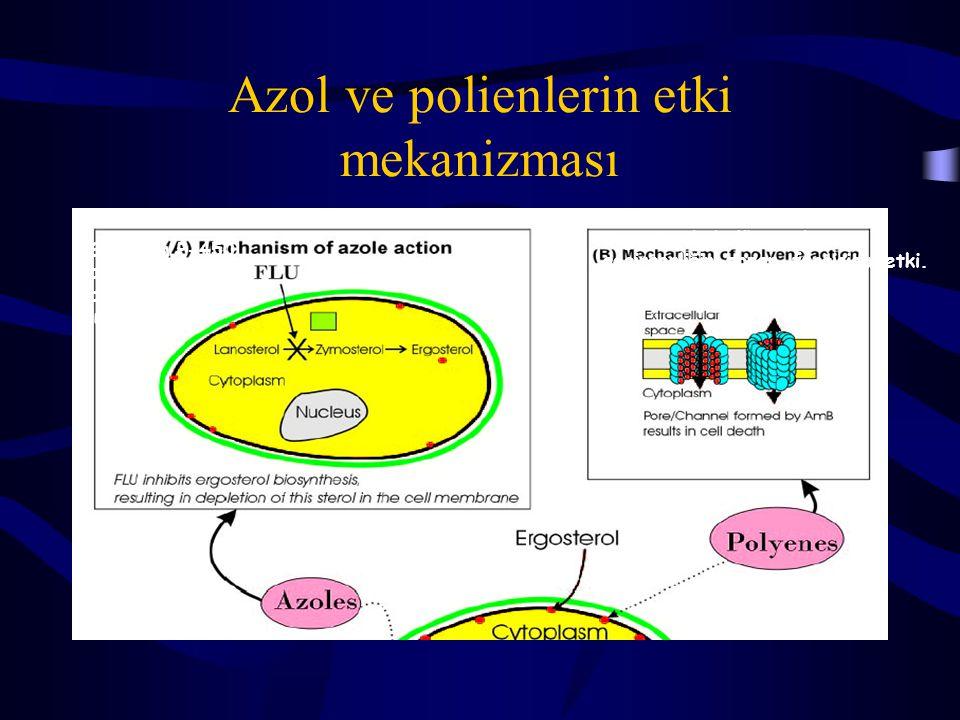Azol ve polienlerin etki mekanizması