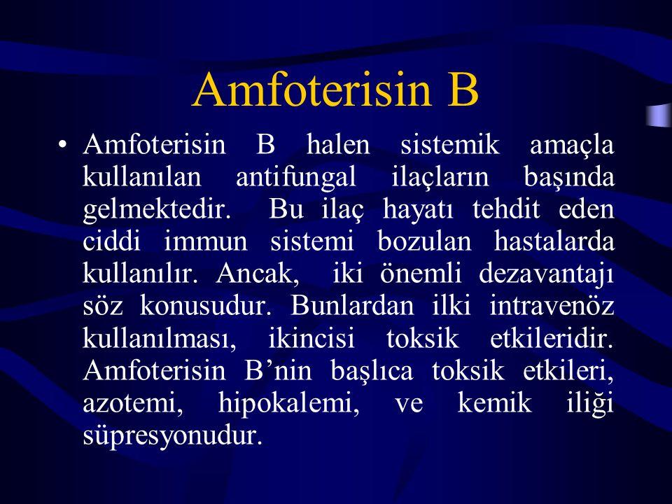 Amfoterisin B