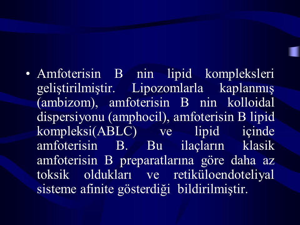 Amfoterisin B nin lipid kompleksleri geliştirilmiştir