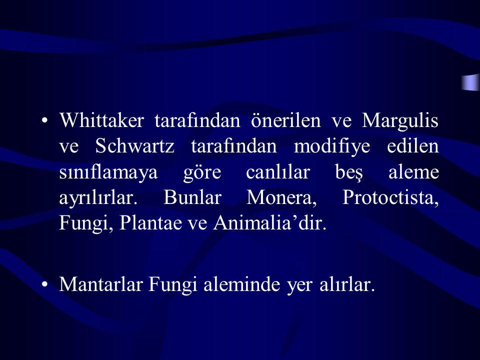 Whittaker tarafından önerilen ve Margulis ve Schwartz tarafından modifiye edilen sınıflamaya göre canlılar beş aleme ayrılırlar. Bunlar Monera, Protoctista, Fungi, Plantae ve Animalia'dir.
