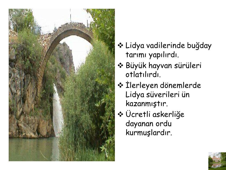 Lidya vadilerinde buğday tarımı yapılırdı.