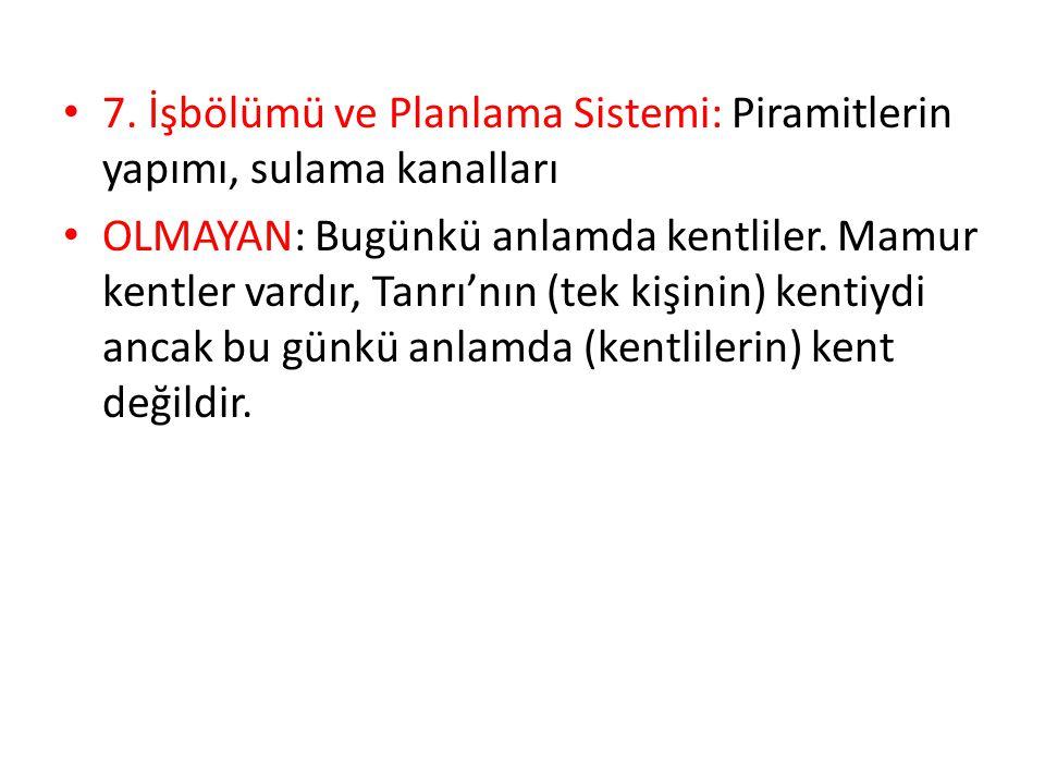 7. İşbölümü ve Planlama Sistemi: Piramitlerin yapımı, sulama kanalları