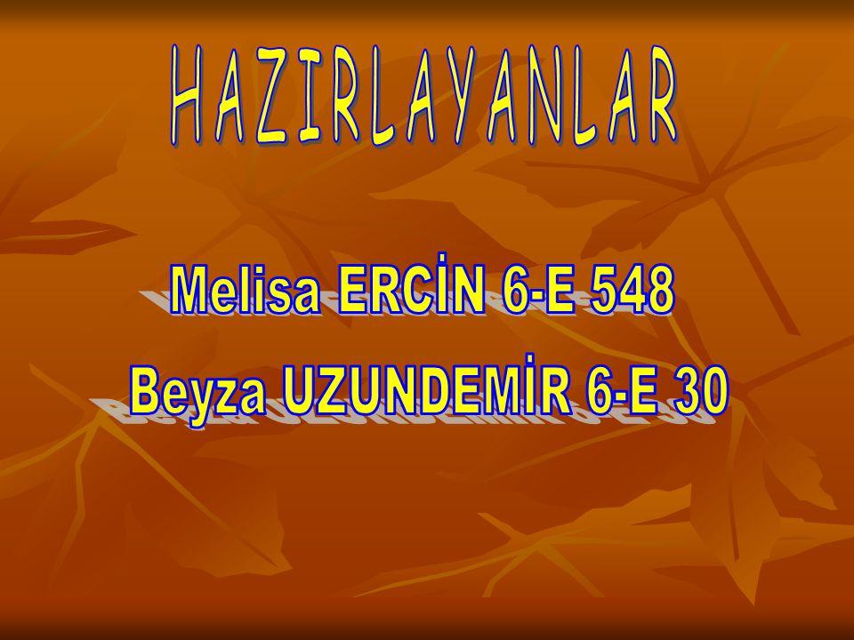 HAZIRLAYANLAR Melisa ERCİN 6-E 548 Beyza UZUNDEMİR 6-E 30