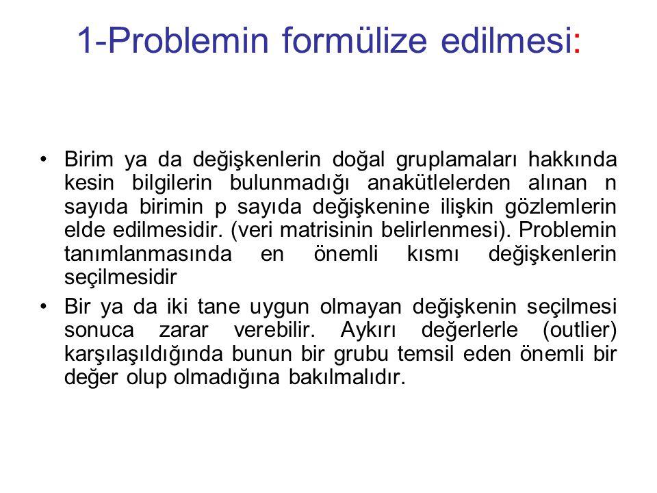 1-Problemin formülize edilmesi: