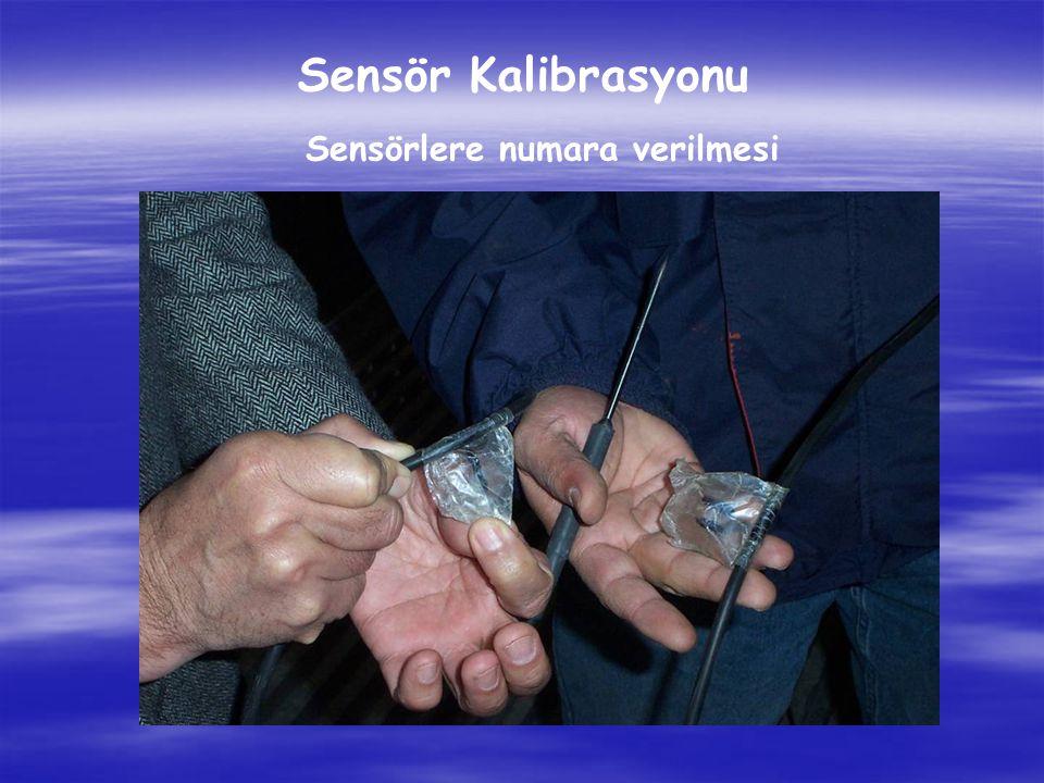 Sensörlere numara verilmesi