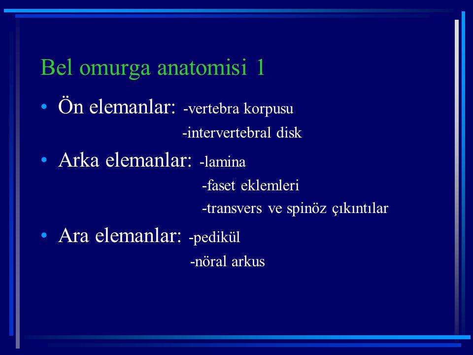 Bel omurga anatomisi 1 Ön elemanlar: -vertebra korpusu