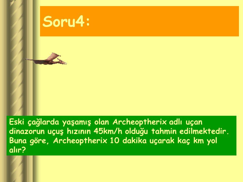 Soru4: Eski çağlarda yaşamış olan Archeoptherix adlı uçan