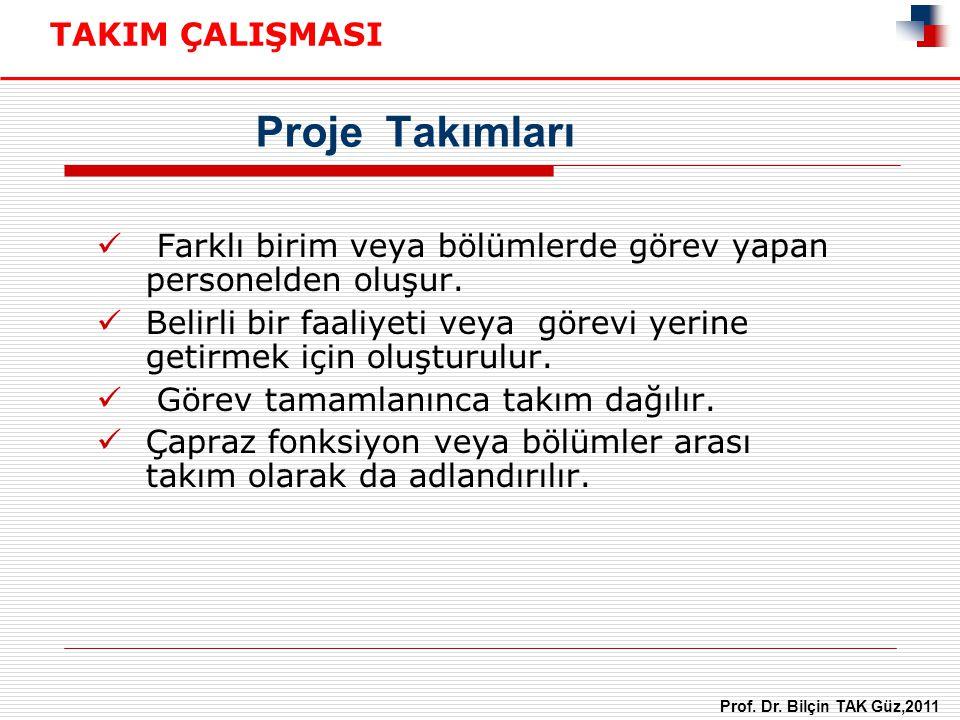 Proje Takımları TAKIM ÇALIŞMASI