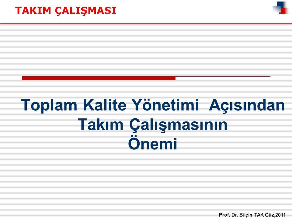Toplam Kalite Yönetimi Açısından Takım Çalışmasının Önemi