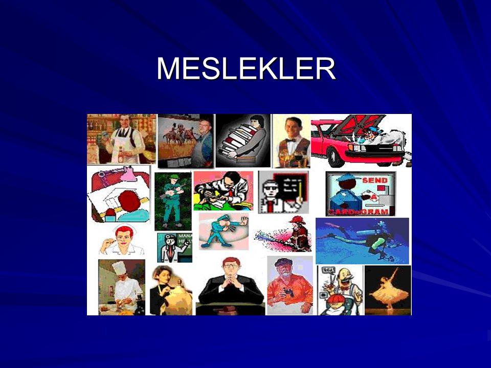 MESLEKLER