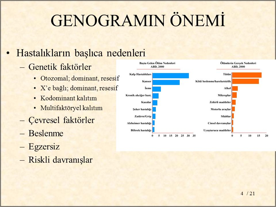 GENOGRAMIN ÖNEMİ Hastalıkların başlıca nedenleri Genetik faktörler