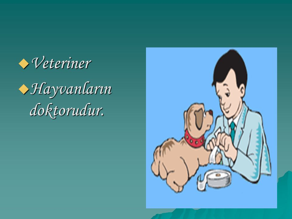 Veteriner Hayvanların doktorudur.
