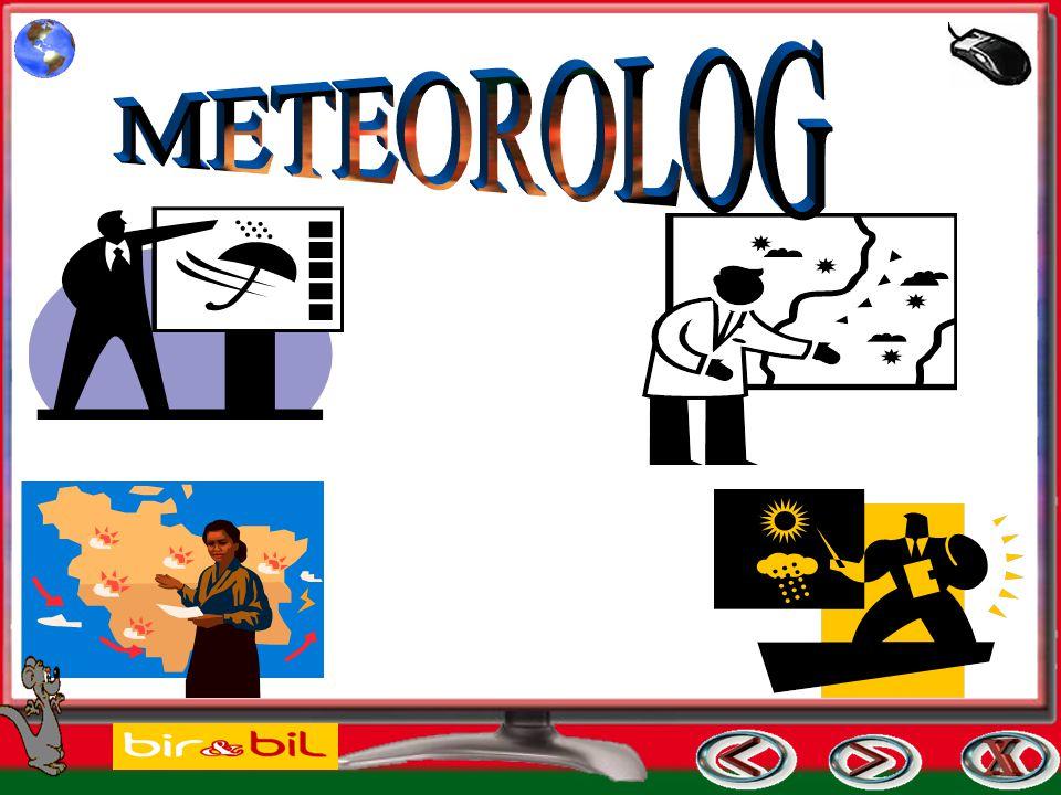 METEOROLOG
