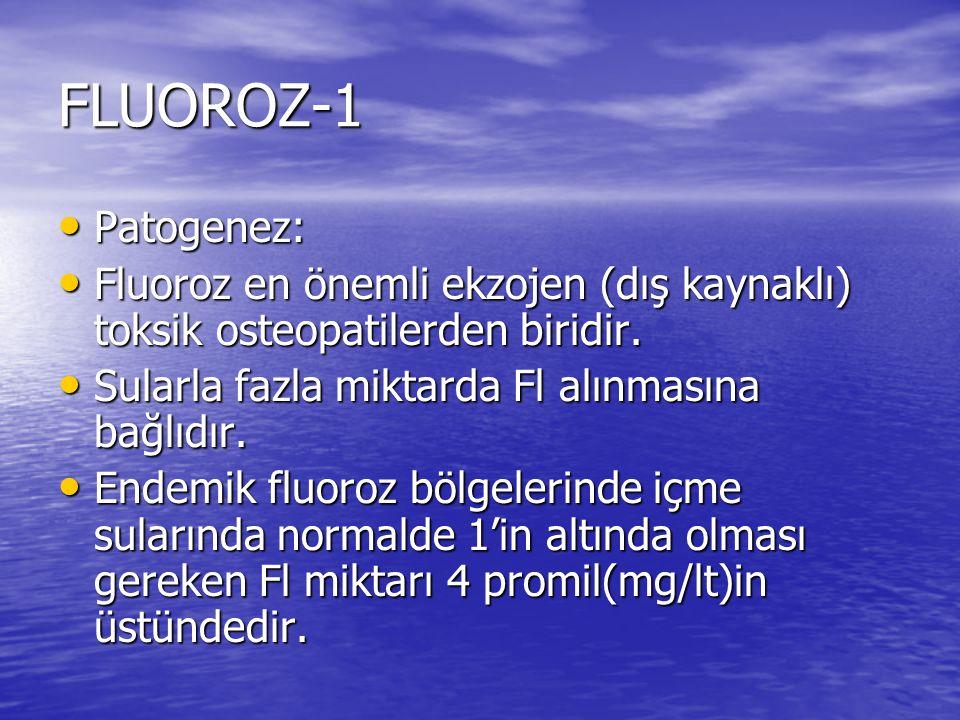 FLUOROZ-1 Patogenez: Fluoroz en önemli ekzojen (dış kaynaklı) toksik osteopatilerden biridir. Sularla fazla miktarda Fl alınmasına bağlıdır.