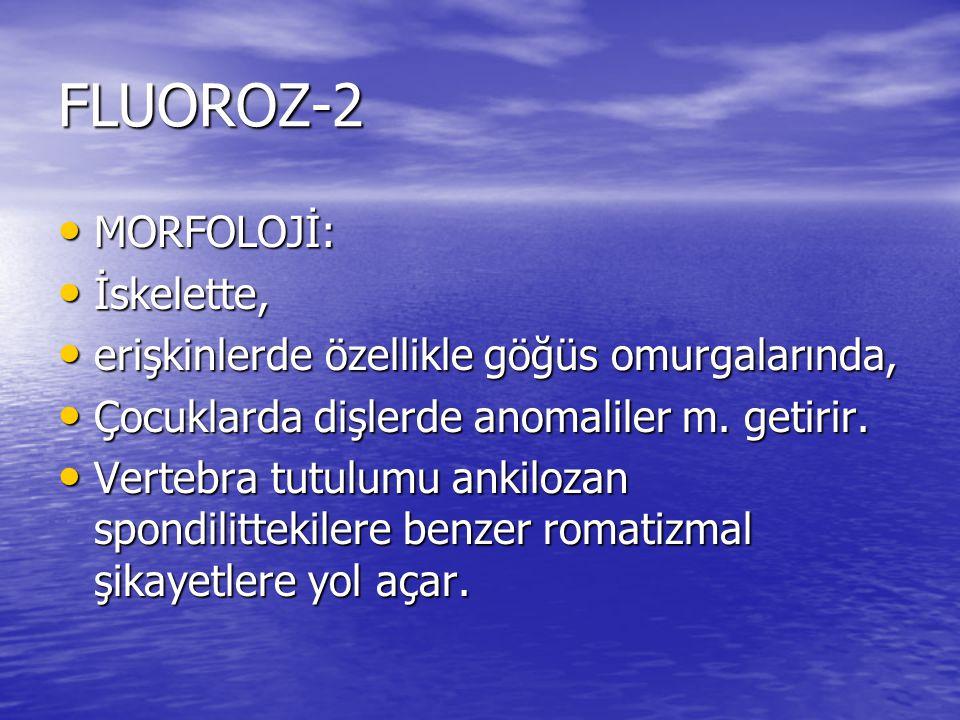 FLUOROZ-2 MORFOLOJİ: İskelette,