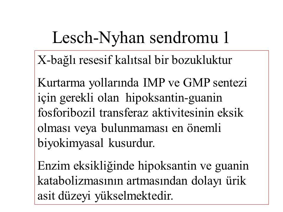 Lesch-Nyhan sendromu 1 X-bağlı resesif kalıtsal bir bozukluktur