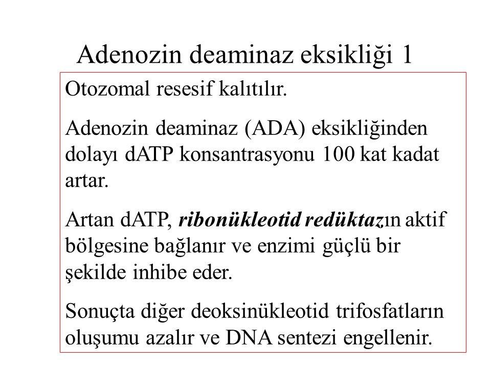 Adenozin deaminaz eksikliği 1